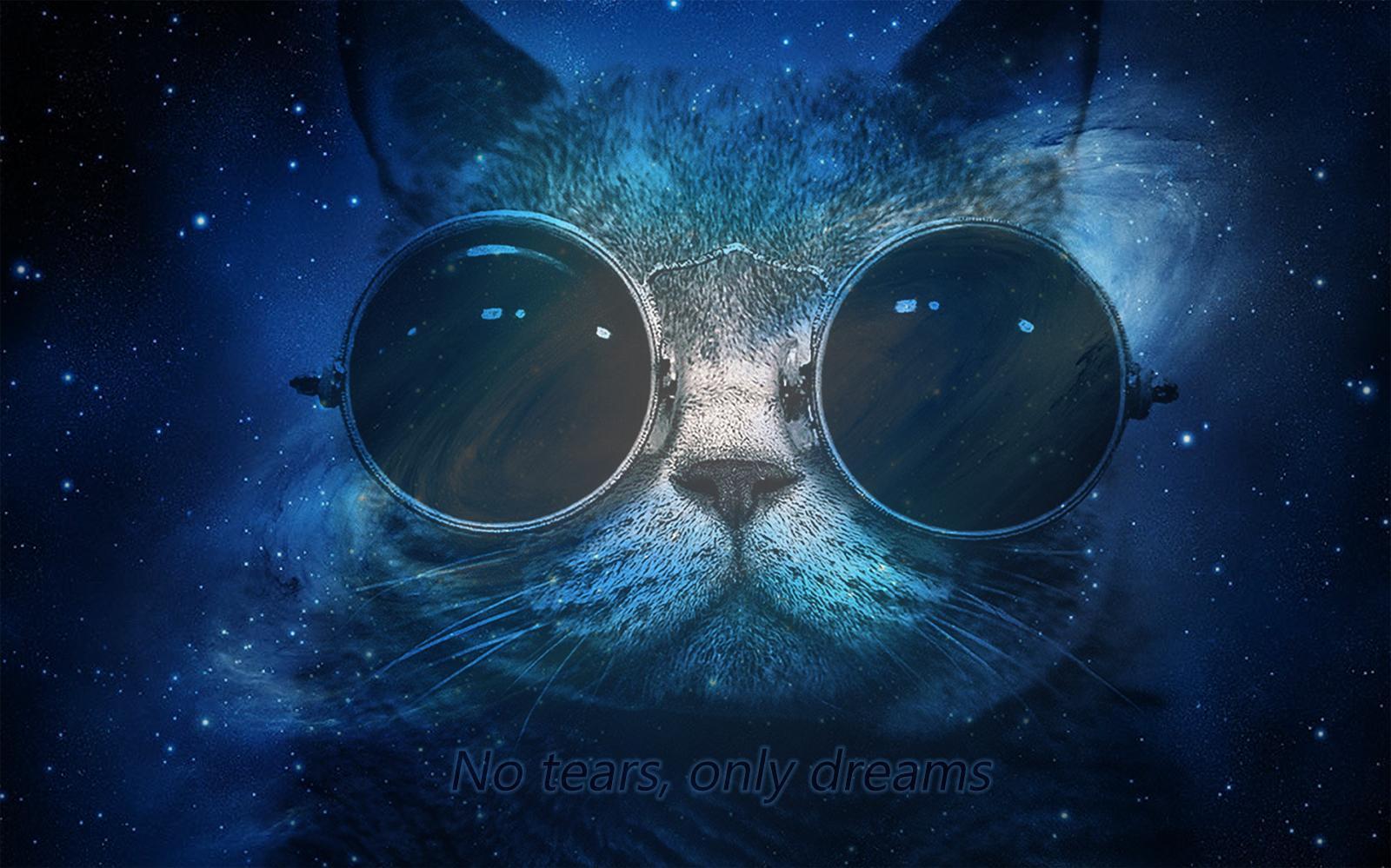 42 cat in space wallpaper on wallpapersafari - Deep blue space wallpaper ...