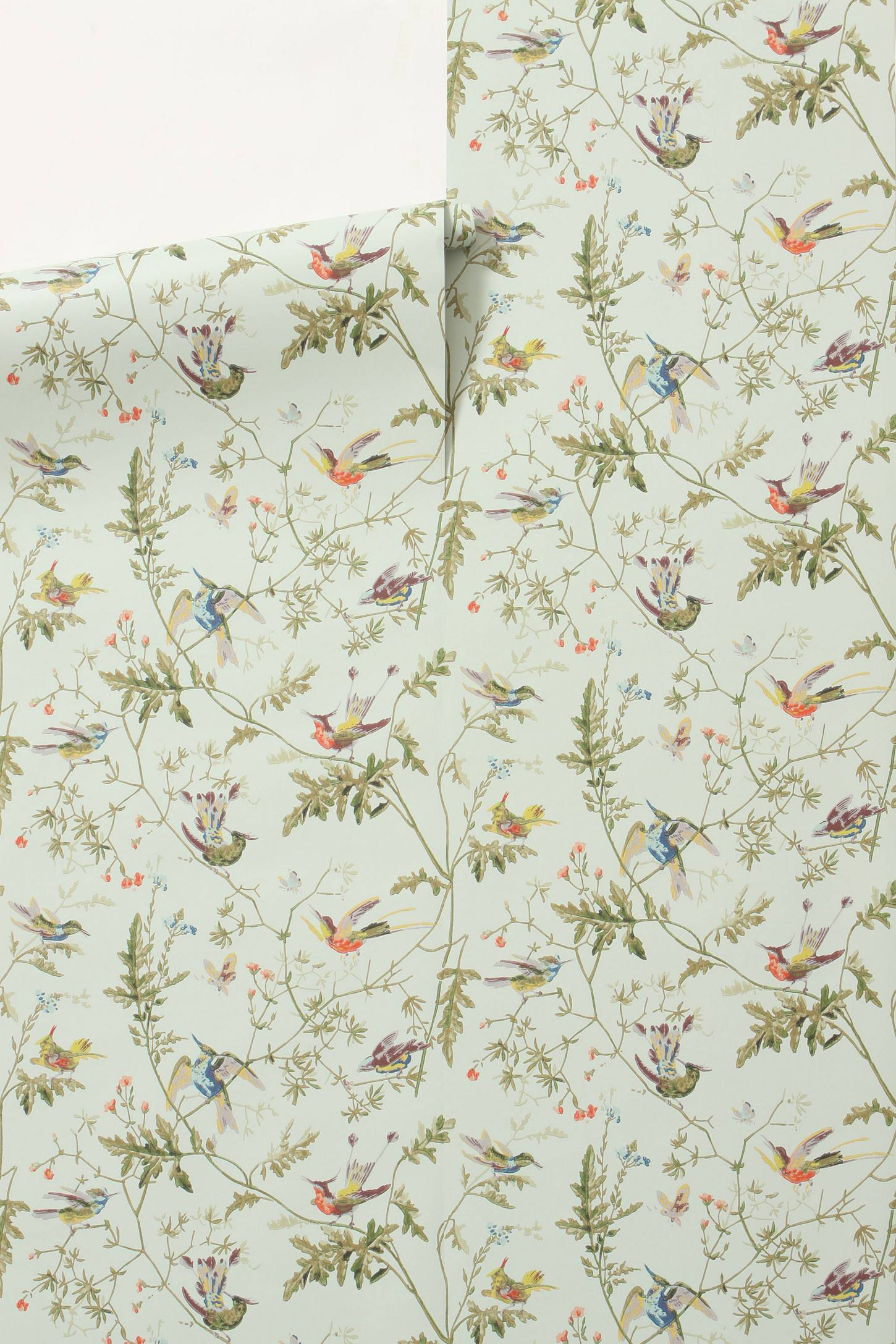 Lookalike for Less Hummingbirds Wallpaper   York Avenue 1450x2175