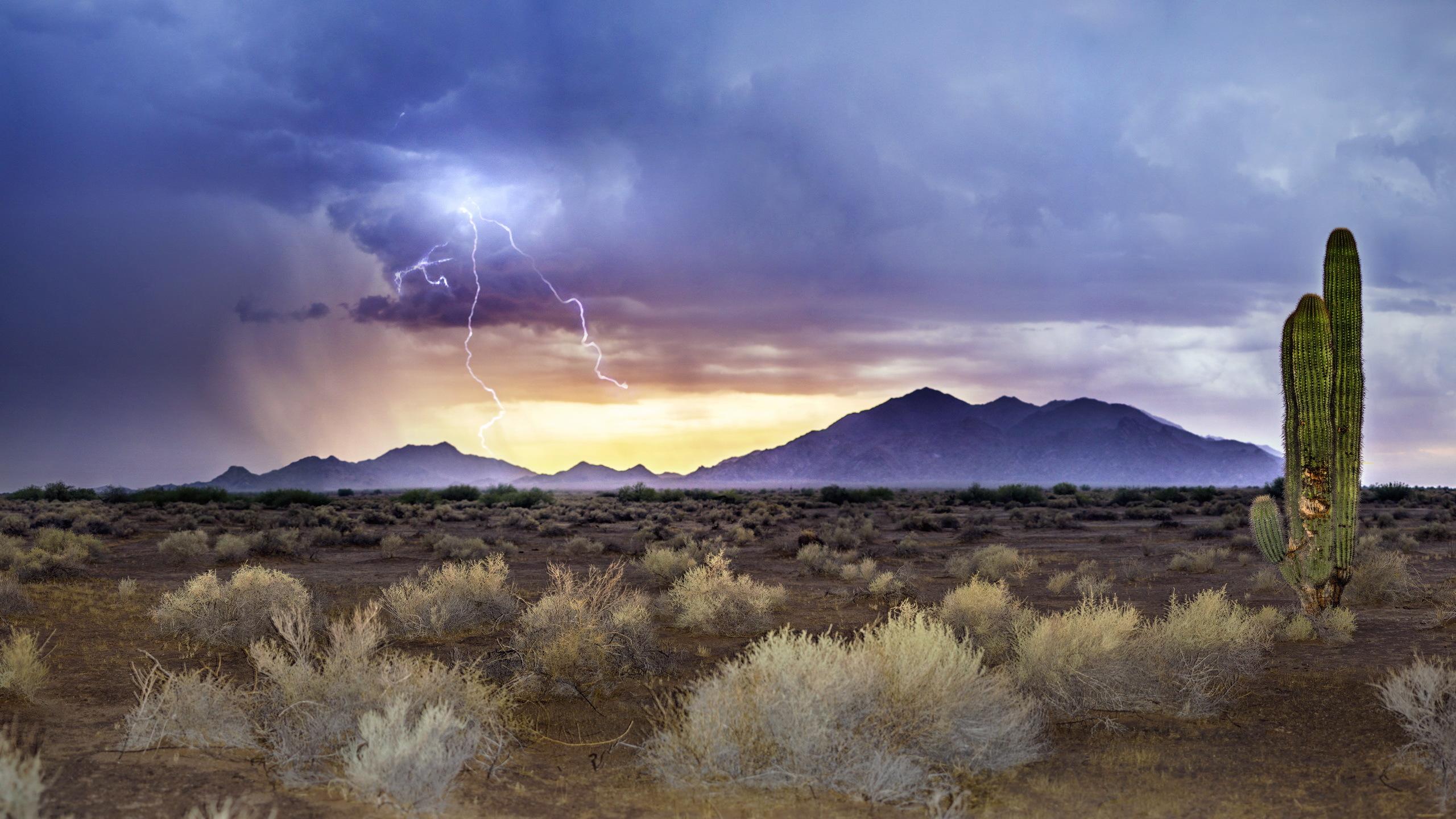 Arizona sunset wallpaper wallpapersafari for Monsoon wallpaper