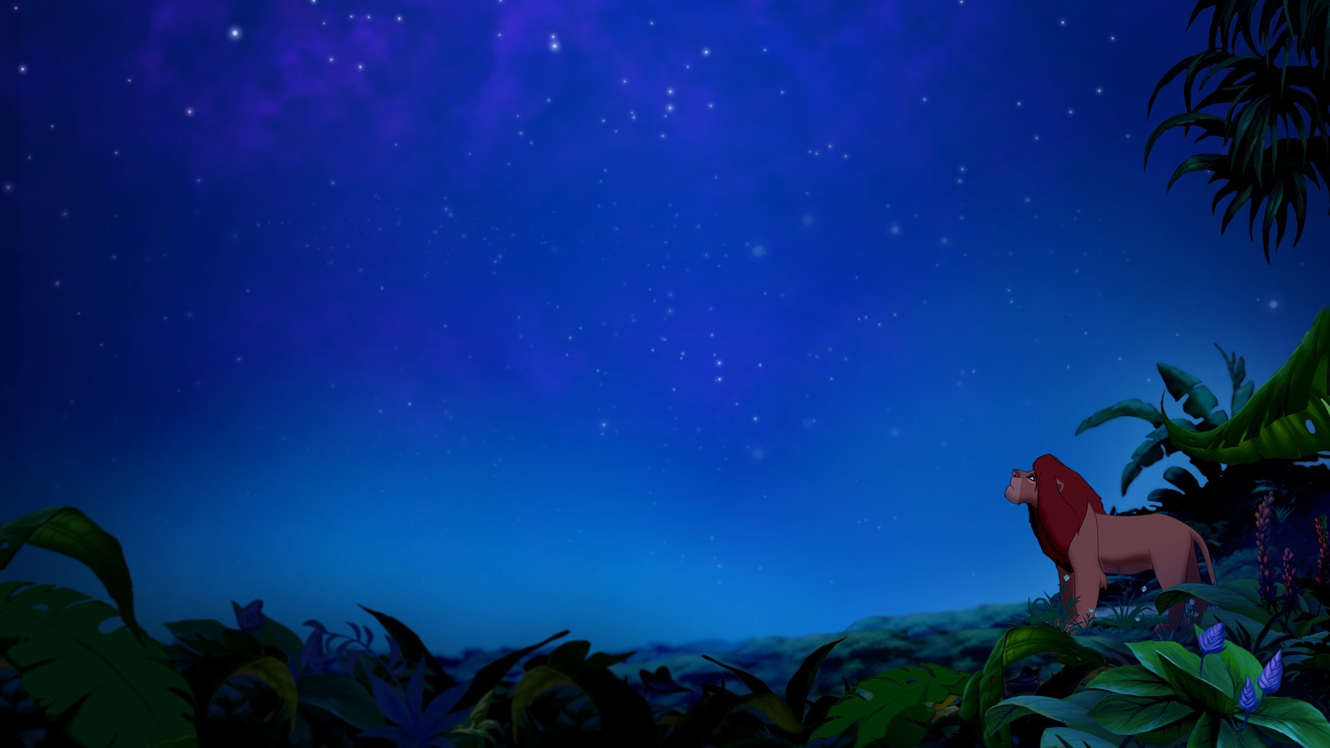 Animated movies the lion king jungle night sky wallpaper 1920x1080