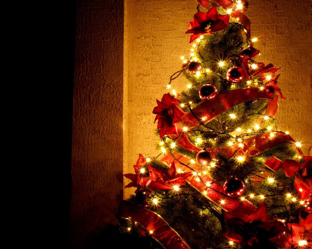 50 Beautiful Christmas Tree Wallpaper On Wallpapersafari