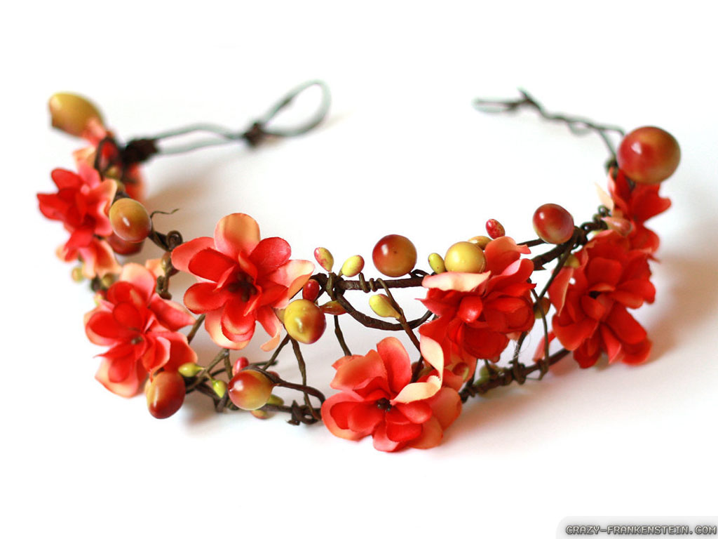 Wallpaper Red flower crown wallpapers 1024x768