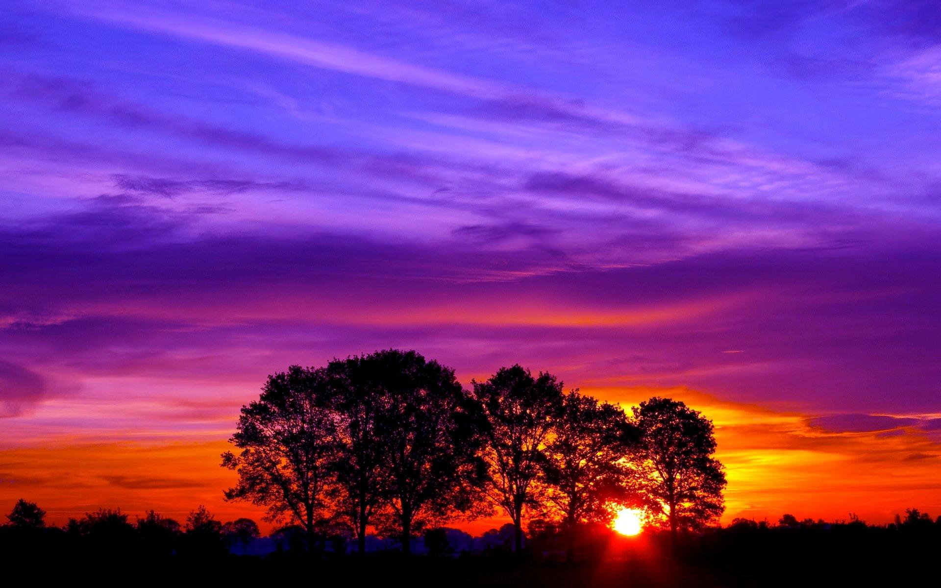 Beautiful Sunset Hd Wallpaper Wallpapersafari
