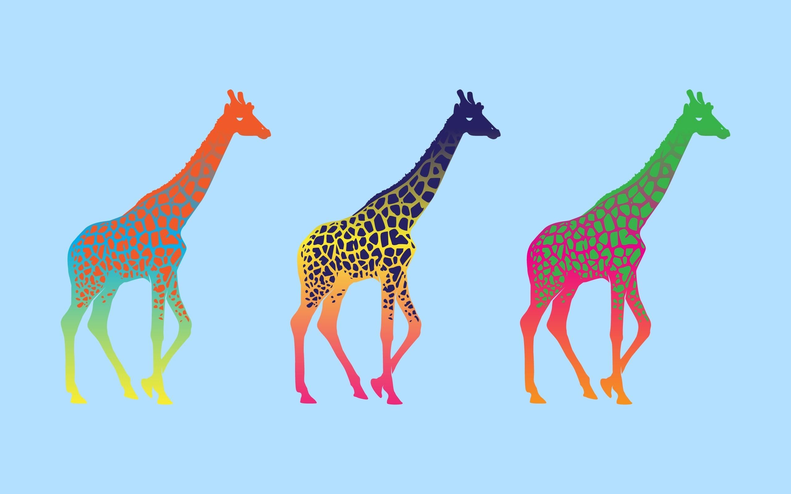 Desktop wallpapers pop art - Giraffe Colorful Pop Art Minimalism Desktop Wallpaper Download Giraffe