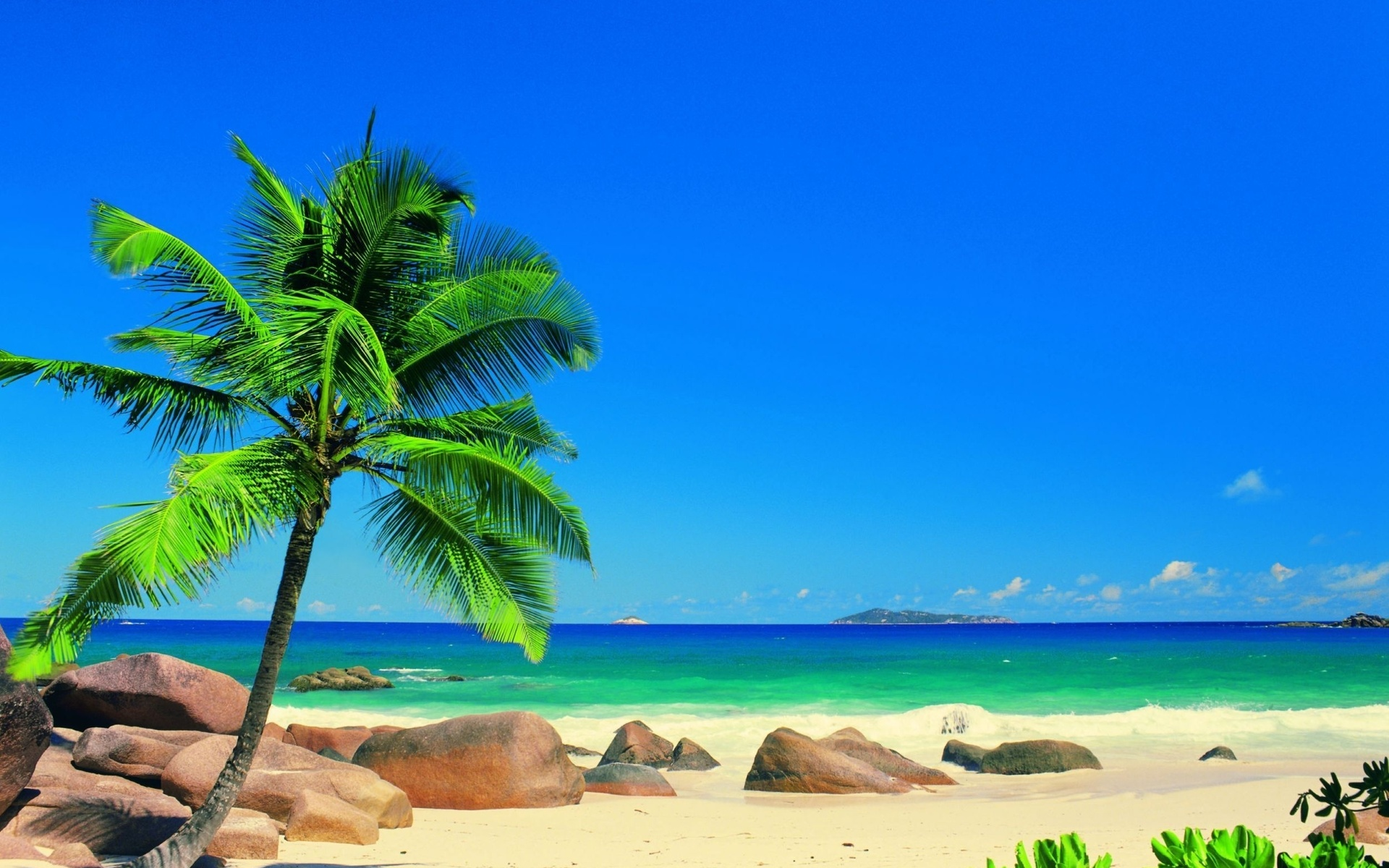 sand landscapes ocean sea palm trees sky tropical wallpaper background 1920x1200