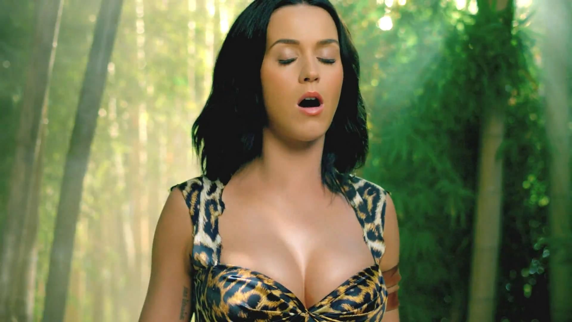 Katy Perry Roar Wallpaper - WallpaperSafari