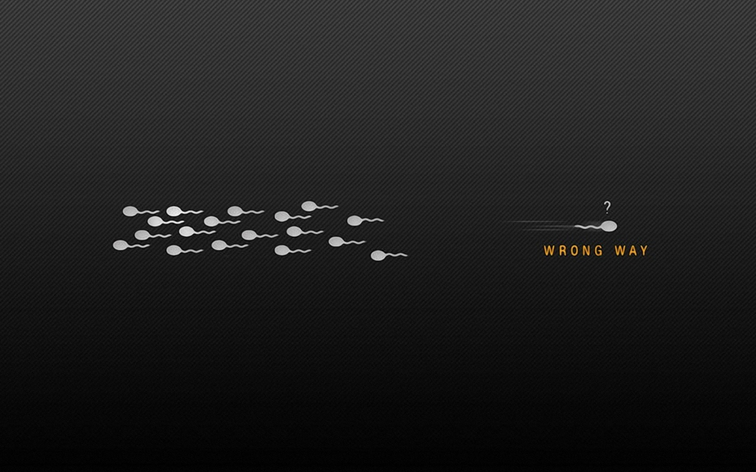 Funny Sperm Facebook Covers Picture 2865   Ongur 2560x1600