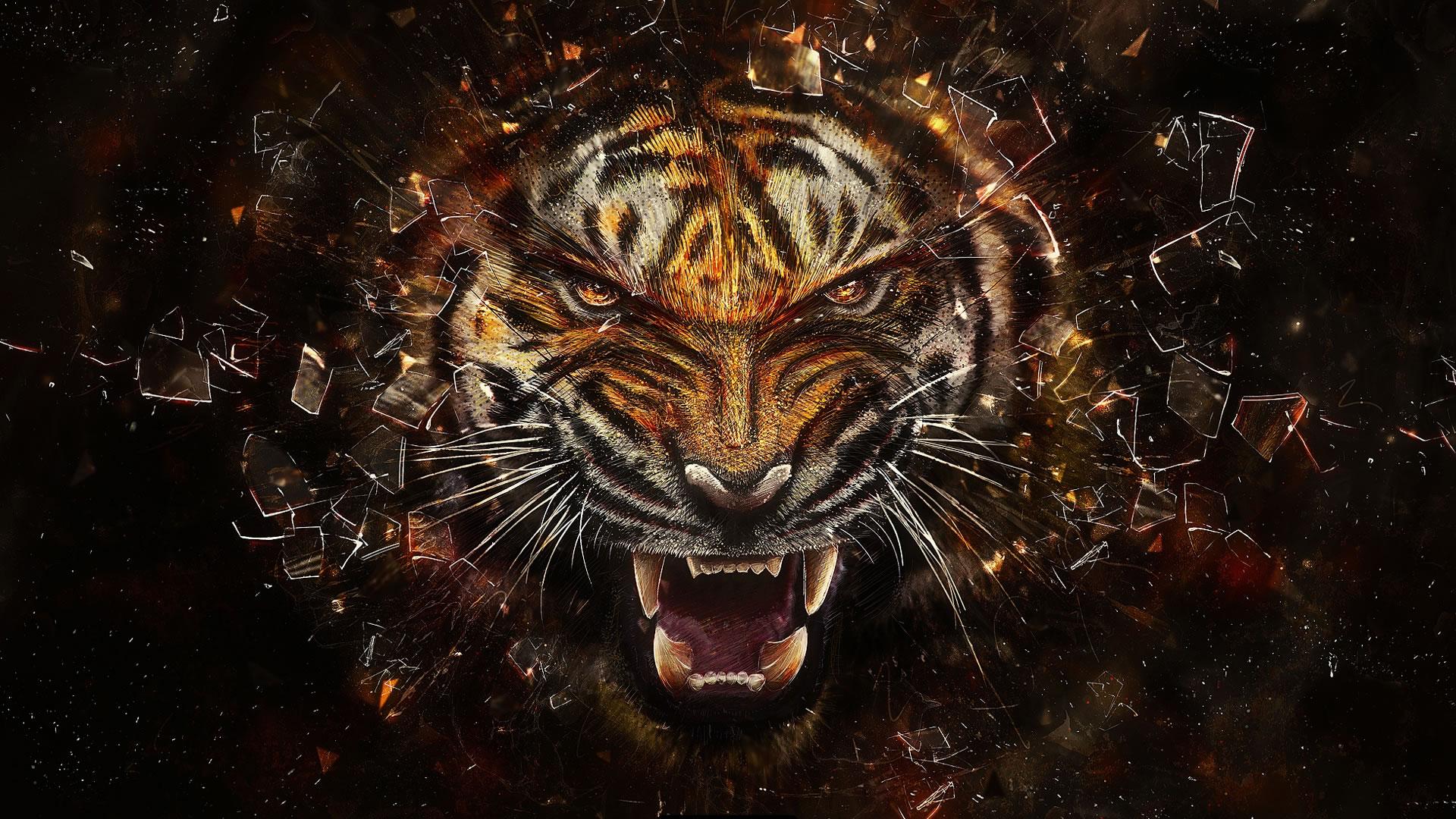 cool tiger design -#main