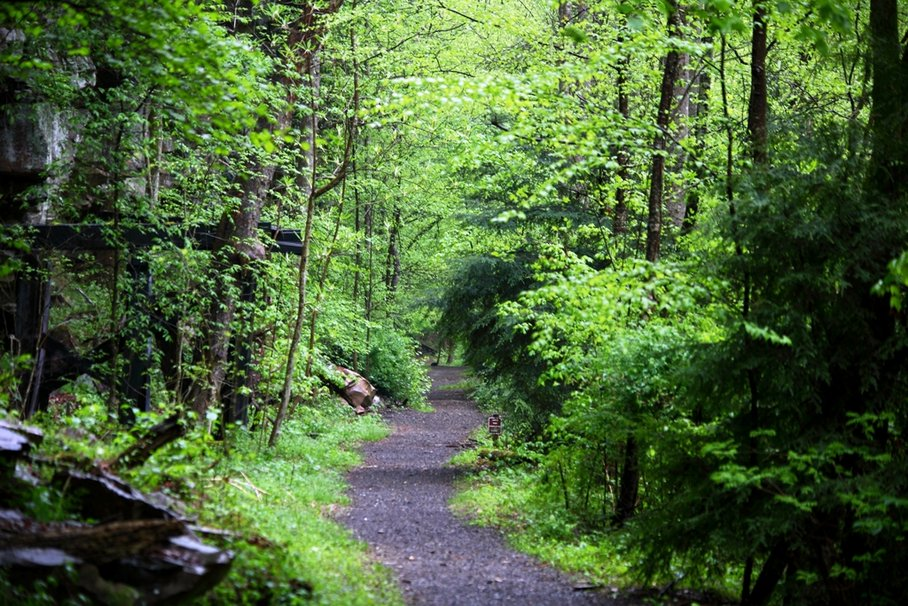 hiking nature wallpaper - photo #31