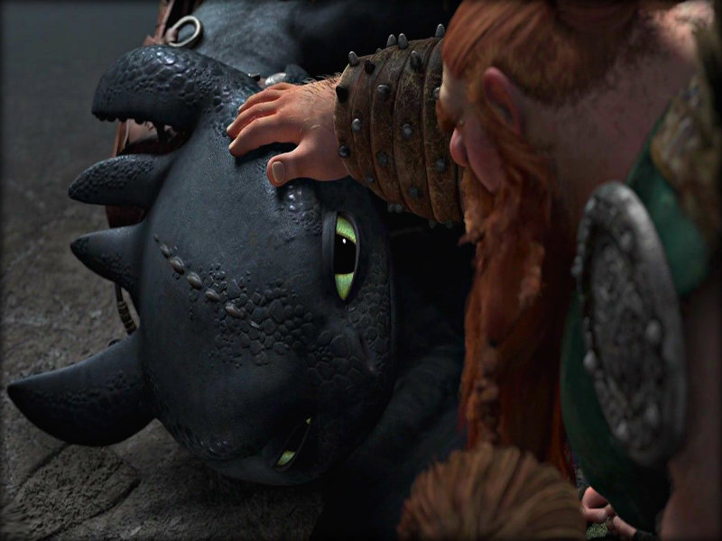Toothless   Toothless the Dragon Wallpaper 33005437 800x600
