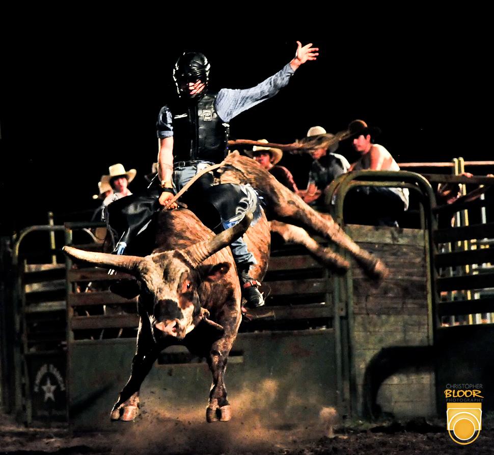 Bull Riding Backgrounds on WallpaperSafari