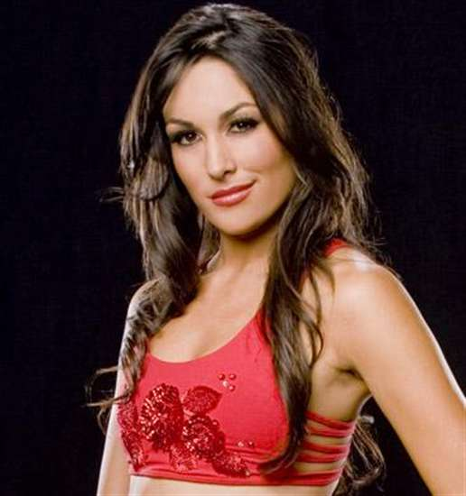 Brie Bella WWE Diva HD Wallpaper   PhotosJunction 516x550