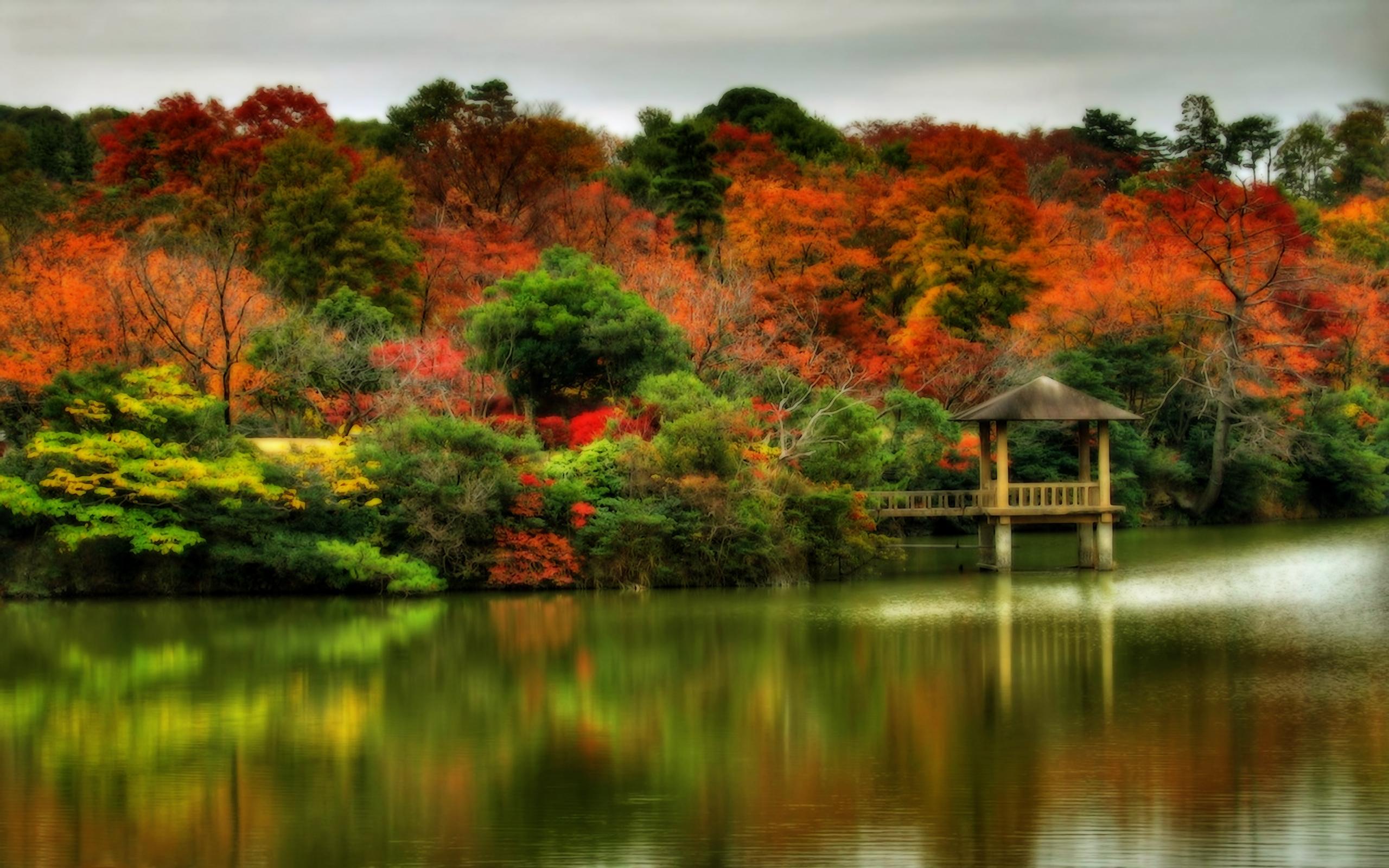 Autumn Wallpaper Wallpaper 2560x1600
