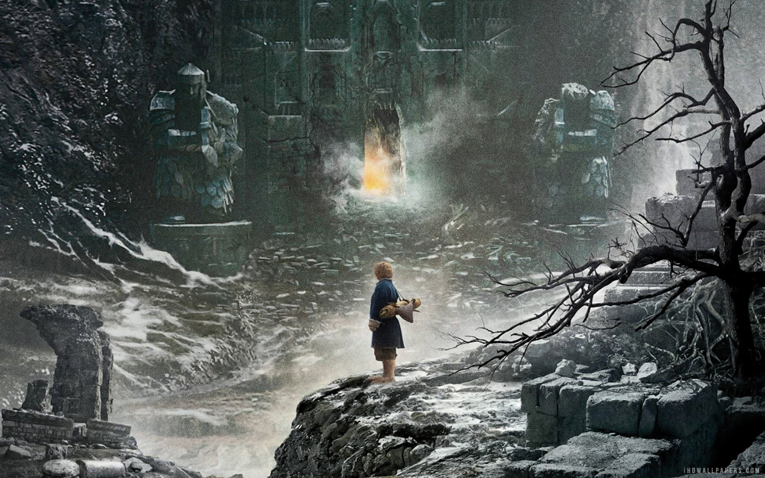 The Hobbit The Desolation of Smaug Wallpaper 2560x1600