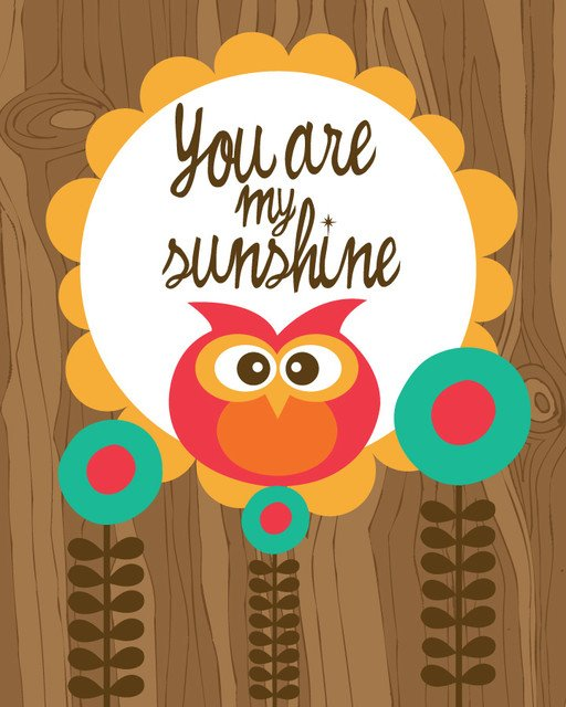 You Are My Sunshine Wall Mural   Contemporary   Wallpaper   by Murals 512x640