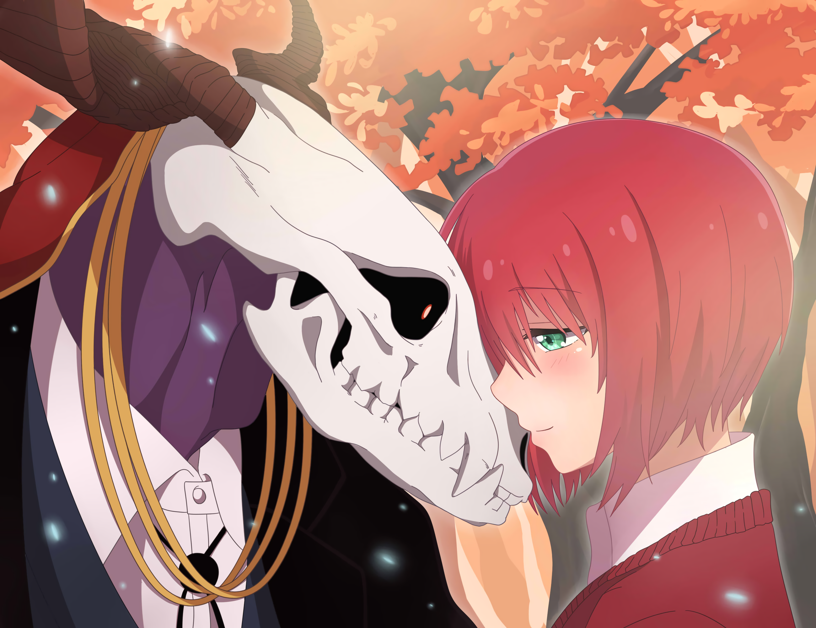 The Ancient Magus Bride Full HD Wallpaper and Background 2600x2000
