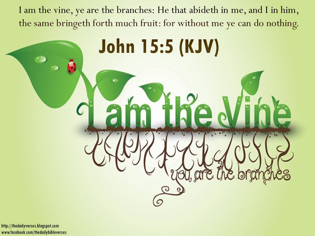 The King James Bible Verses Quotes Passages And Scriptures 1024x768