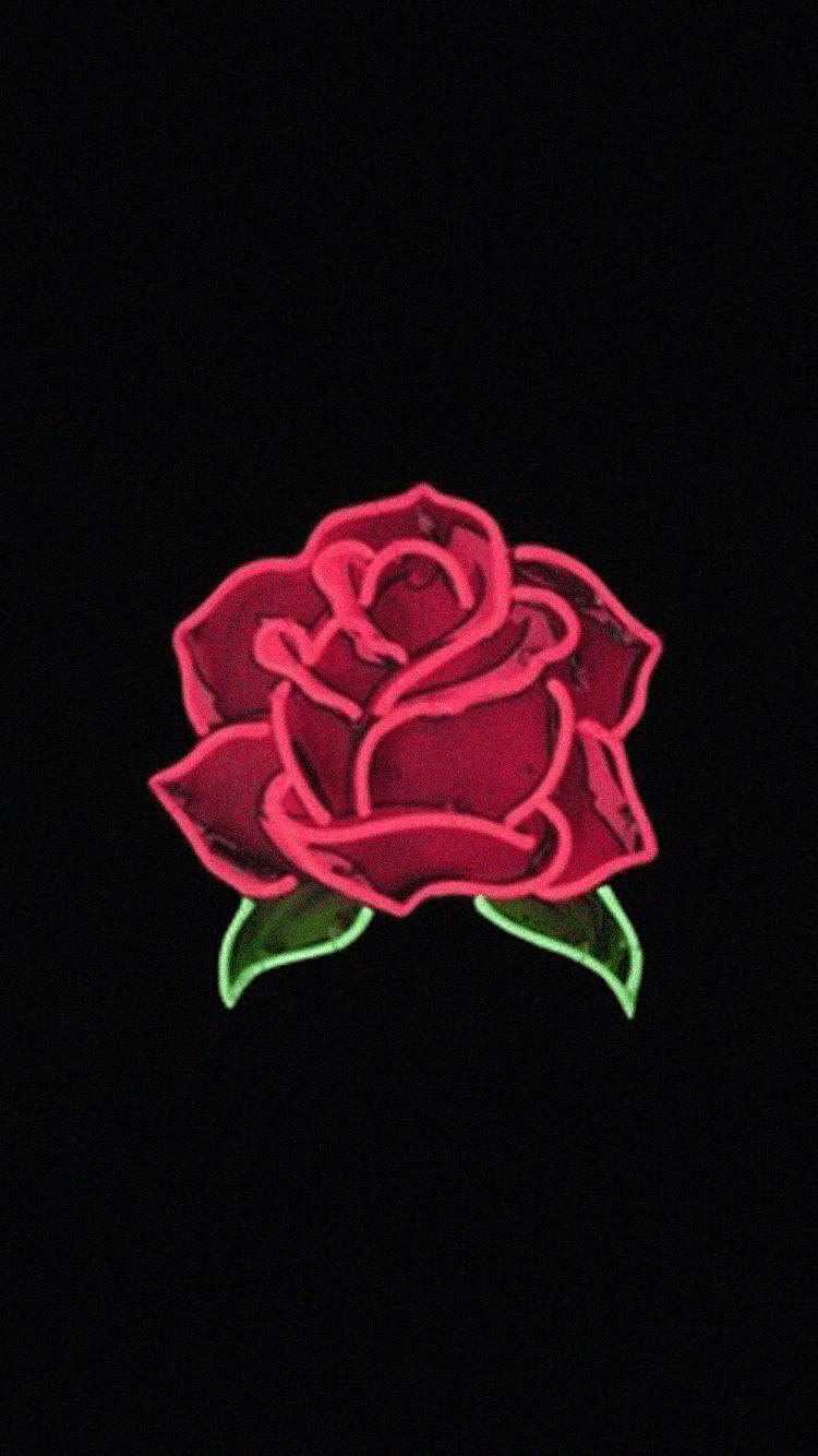 Wallpaper With Rose posted by Christopher Walker 750x1334