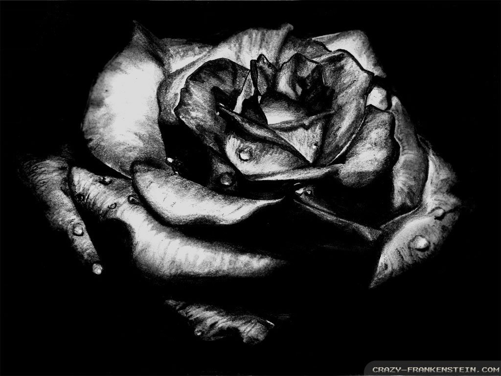 Black rose gothic wallpapers 1024x768 by geny evilgoth16 1024x768