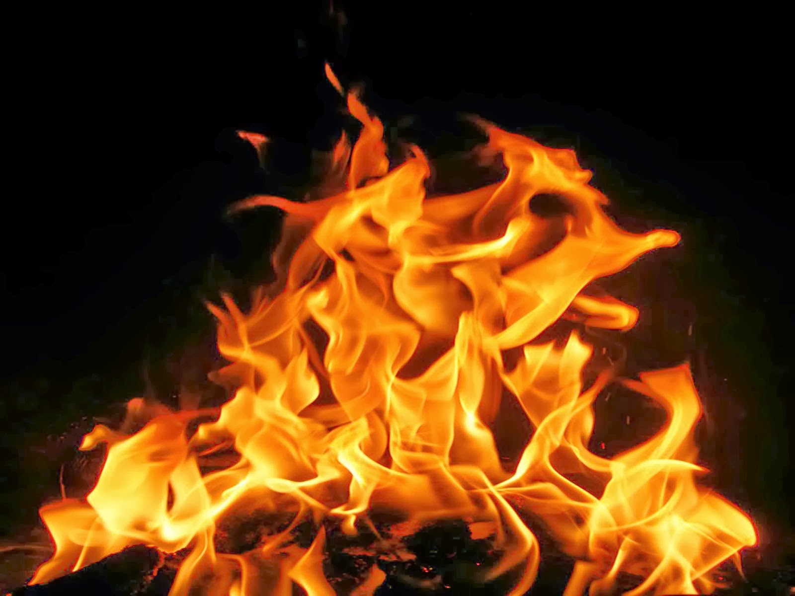 Go Back Images For Animated Fire Flames 1600x1200