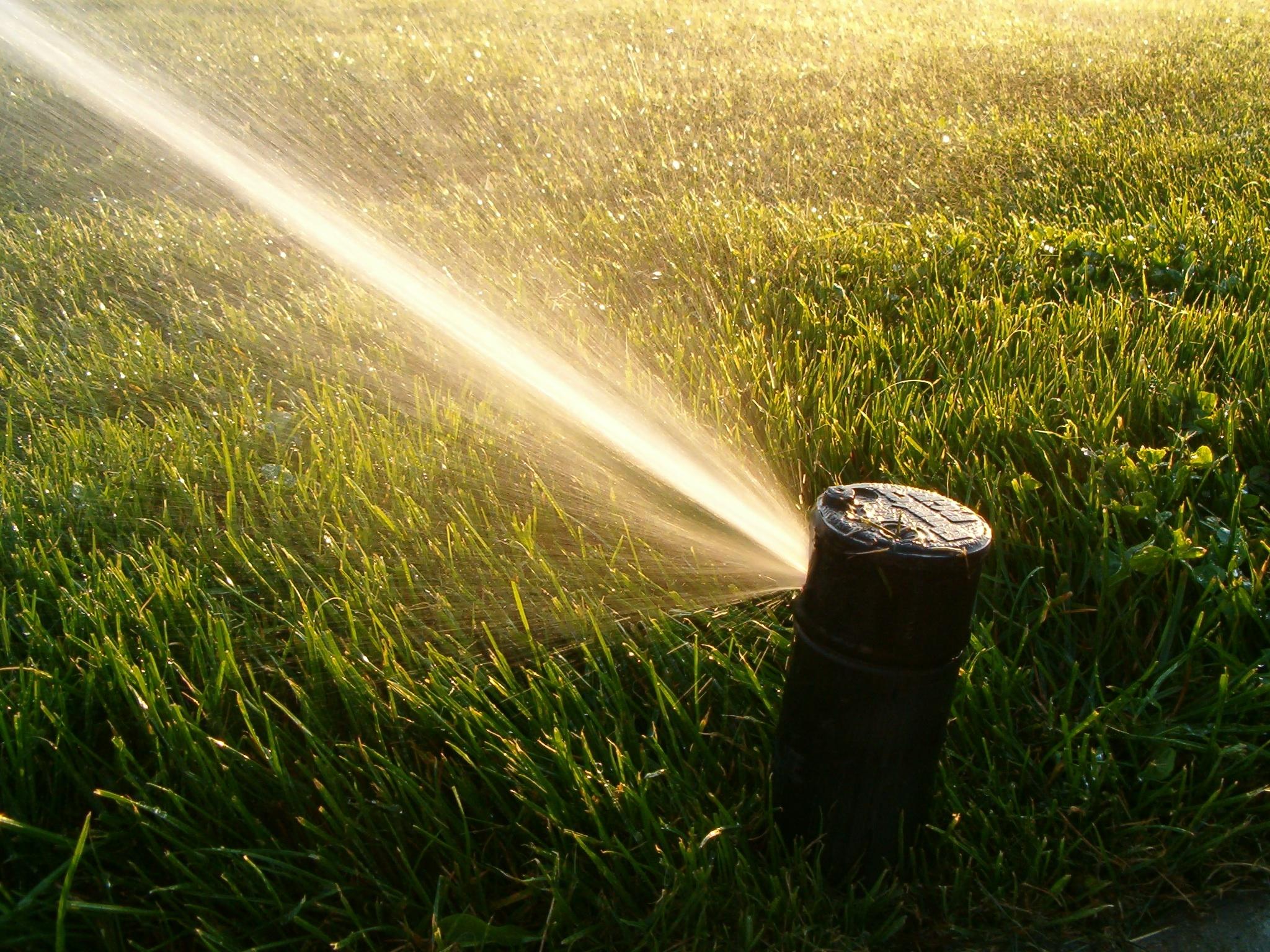 Best 52 Turf Irrigation Wallpaper on HipWallpaper Turf 2048x1536