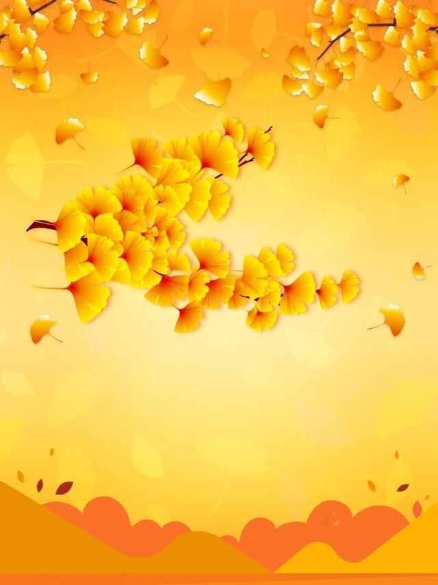 Autumn Ginkgo Leaves Background Harvest Season Autumn Autumn 640x854