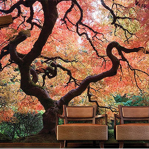 Japanese Garden Wallpaper Mural   blossom tree feature wall decor 600x600