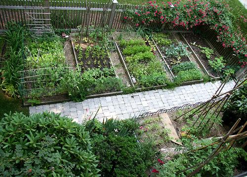 Vegetable Gardening Wallpaper - Wallpapersafari