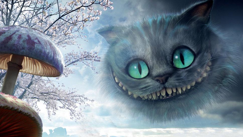 Cheshire Cat wallpaper   ForWallpapercom 969x545