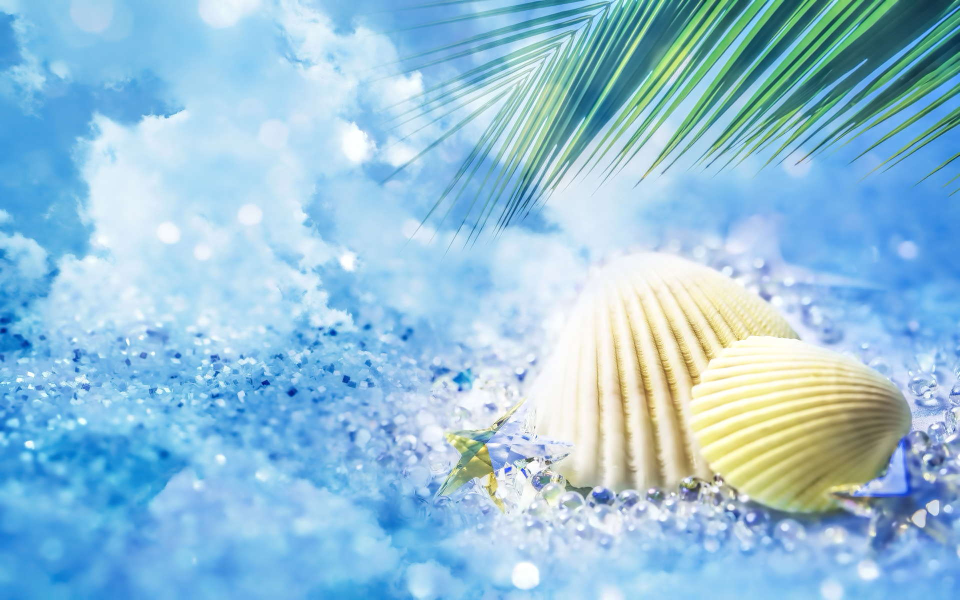 Beach Dream Sea Shells widescreen wallpaper Wide WallpapersNET 1920x1200