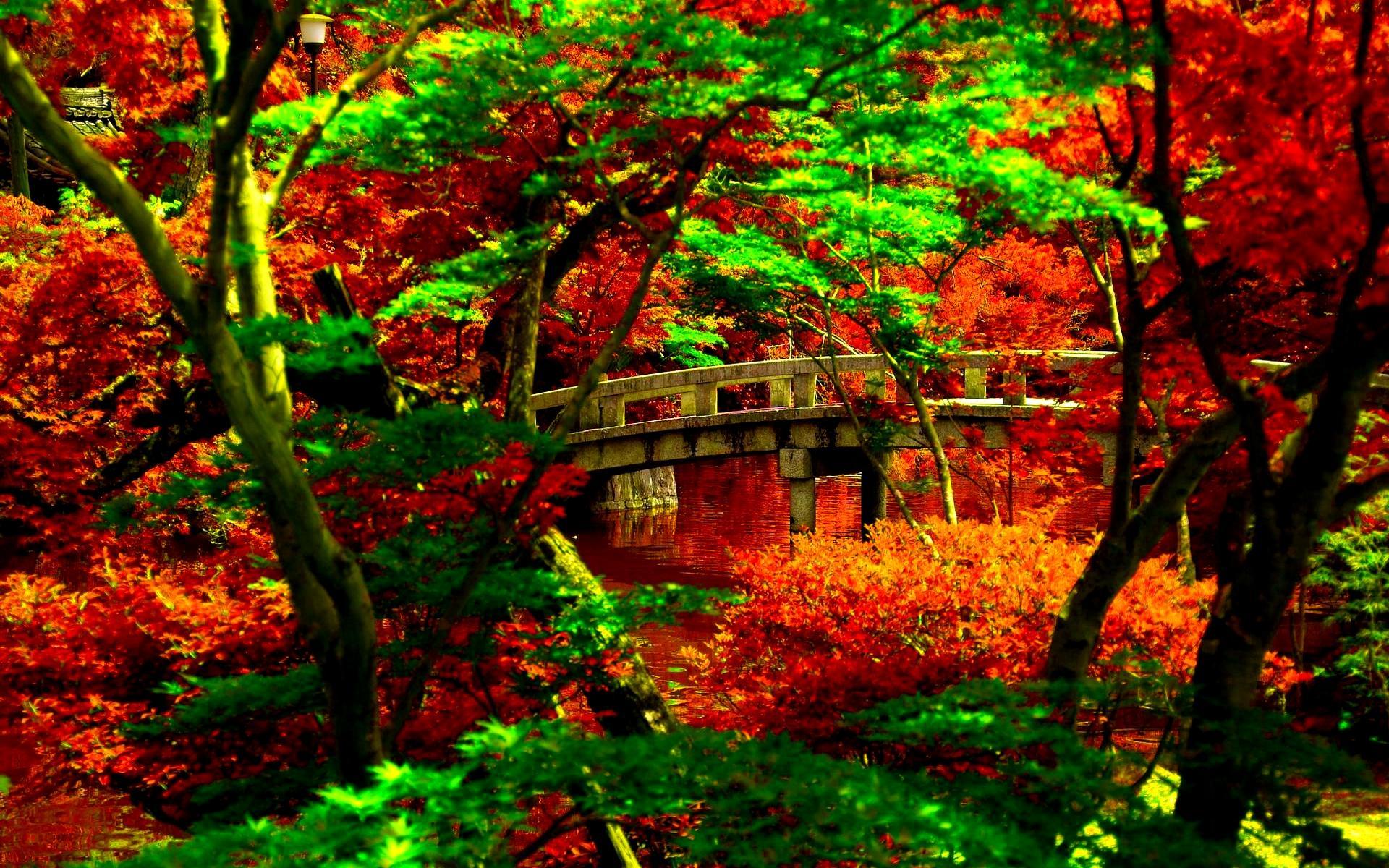 Japanese Tea Garden Wallpaper Design Best Japanese Gardens