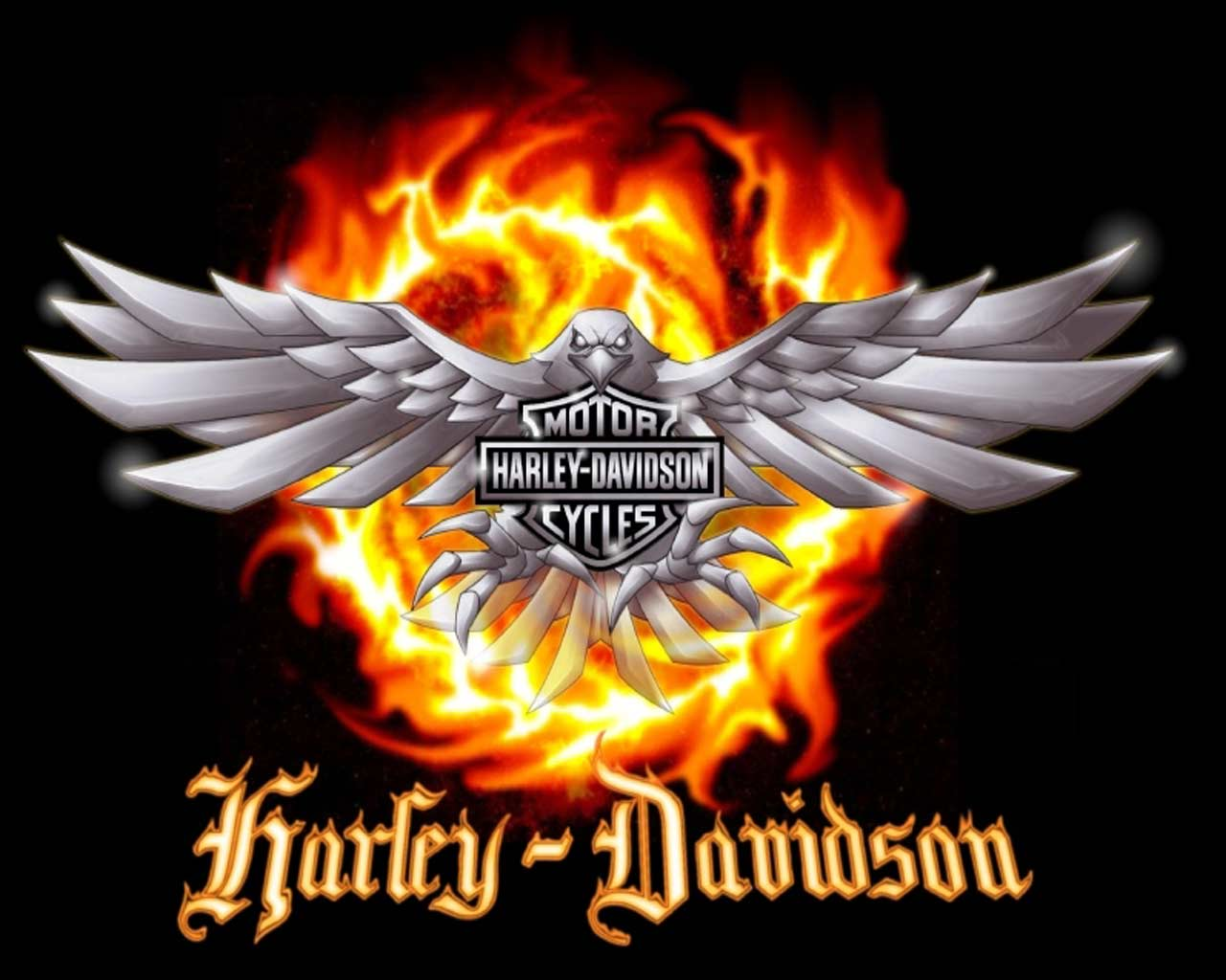 Harley Davidson Logo Wallpaper 6919 Hd Wallpapers in Logos   Imagesci 1280x1024