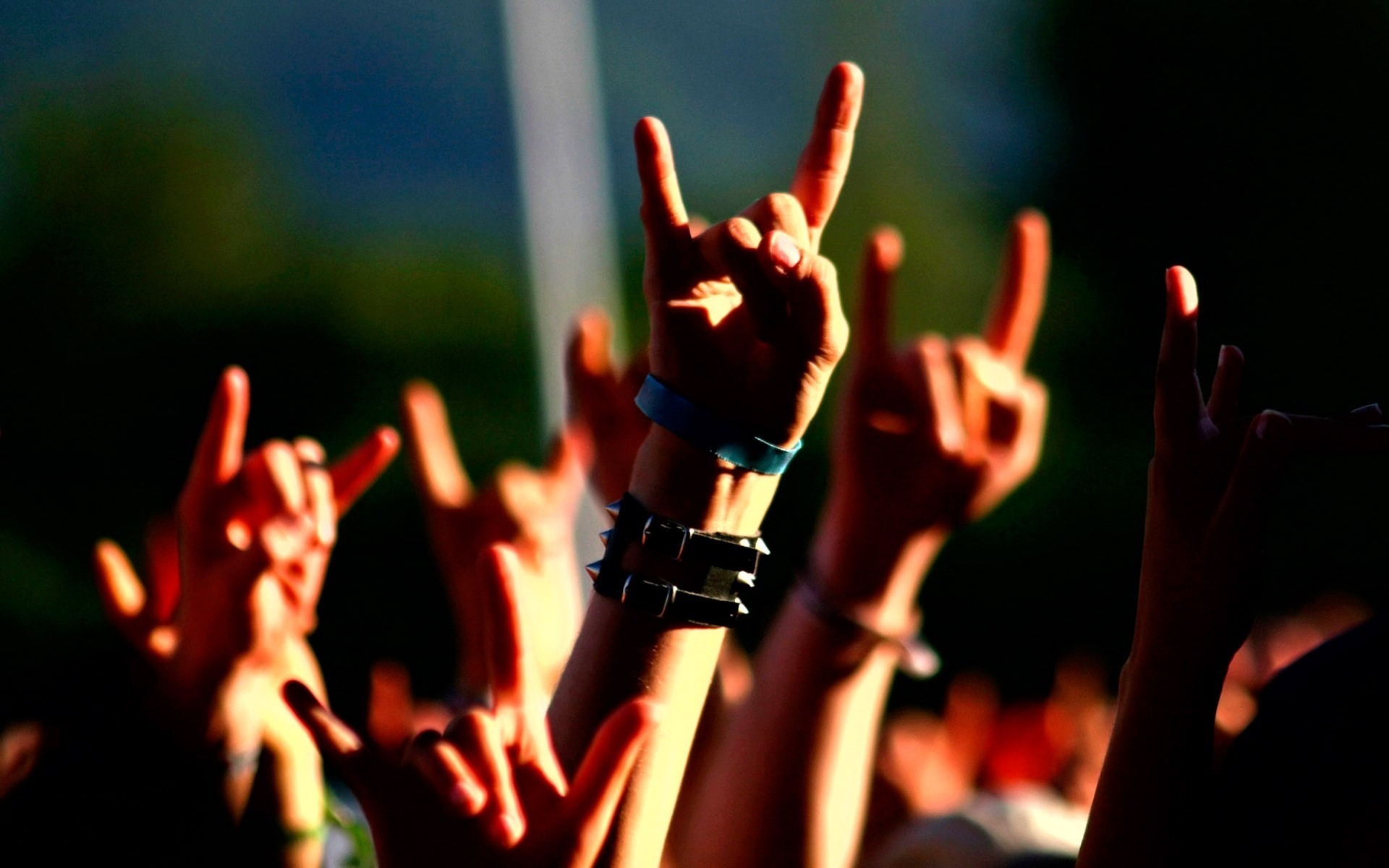 Music Concert Metal Horns Hand Signs Wide 69116 HD Wallpaper Res 1920x1200