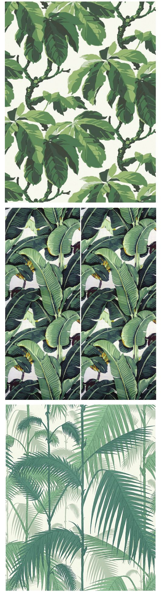 Oxfords Beverly Hills Cole Sons Och Cole Hill Wallpapers 530x1938