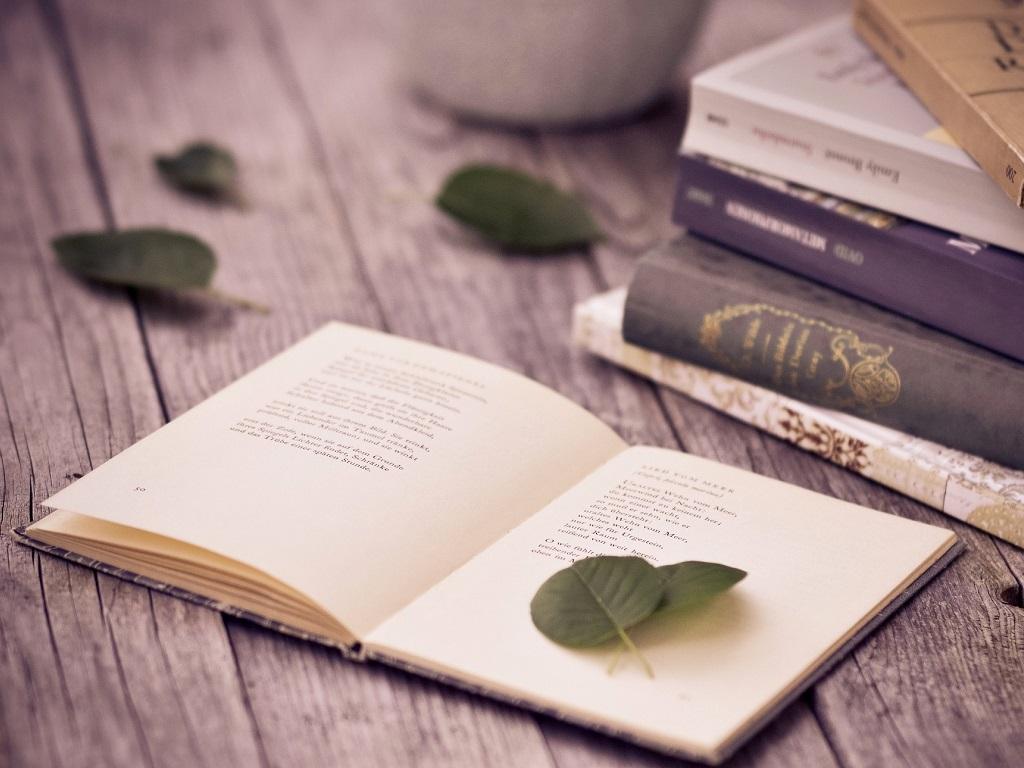 Book Desktop and mobile wallpaper Wallippo 1024x768