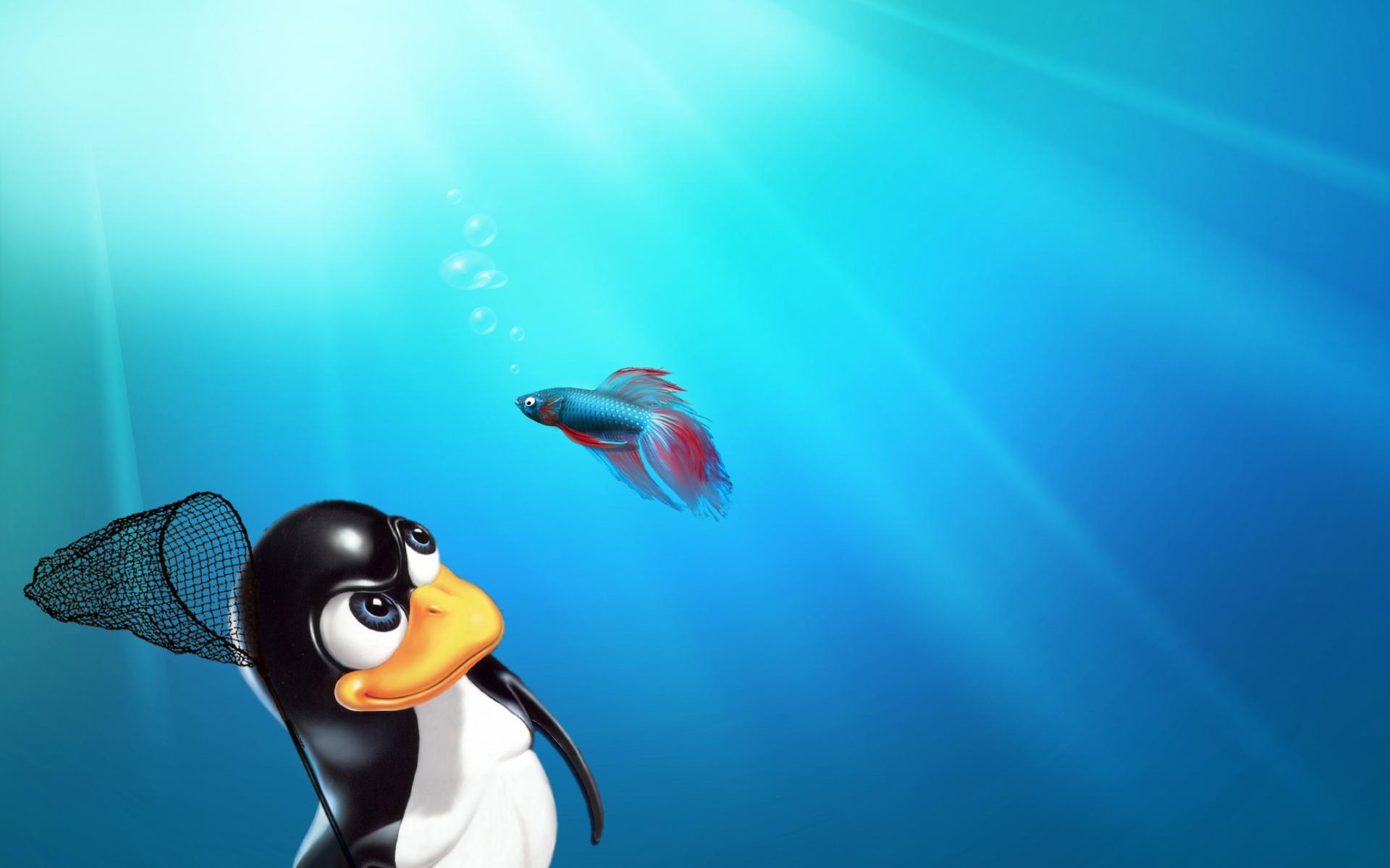 Linux Wallpaper Wallpaper 1920x1200