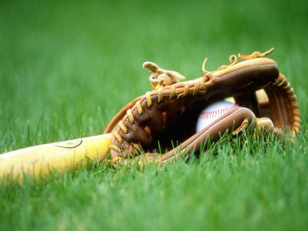 Softball Field Wallpaper Images Pictures   Becuo 1280x960
