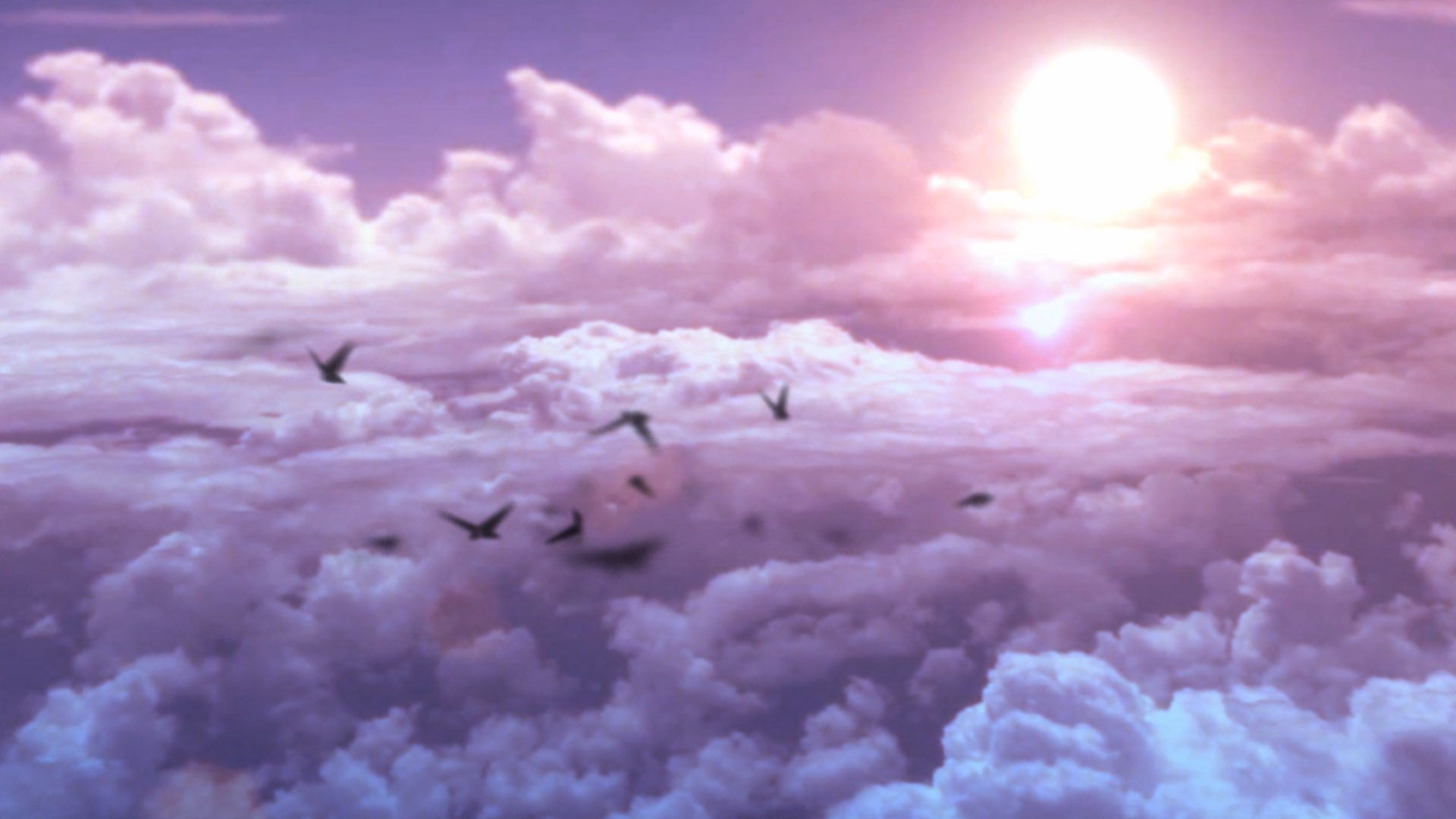 dreamscene video wallpaper download free