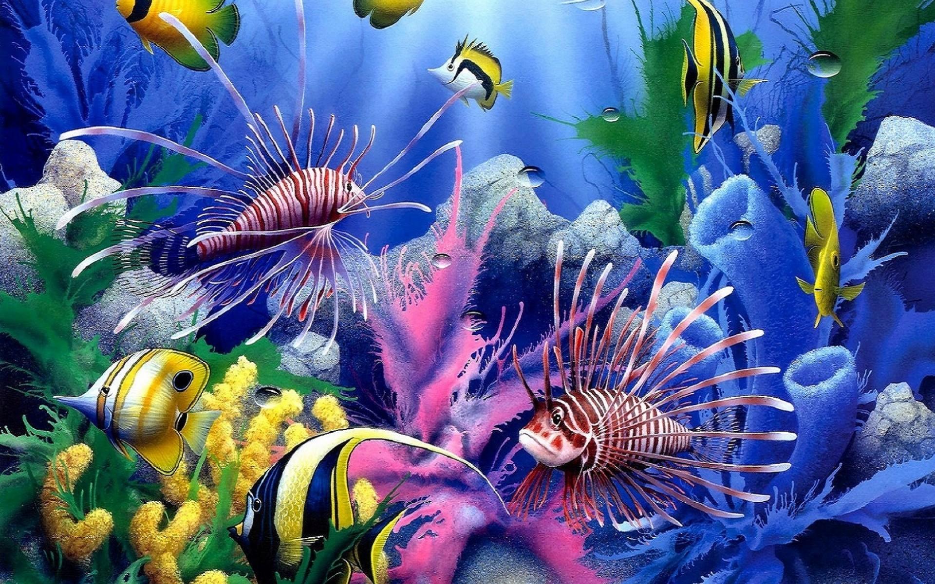 Desktop Images Nature Background Images Windows 10 Mac Wallpaper 1920x1200