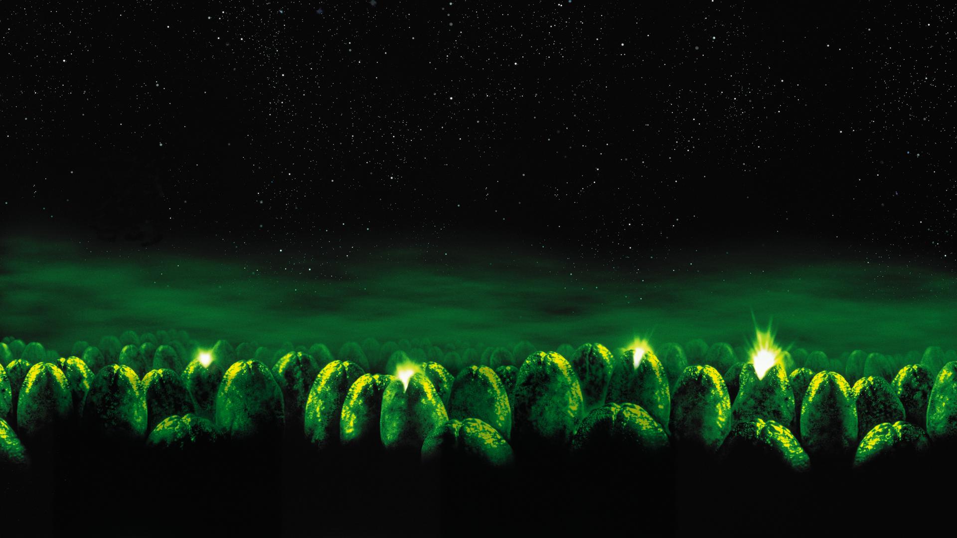Alien wallpaper 1920x1080 1   hebusorg   High Definition Wallpapers 1920x1080
