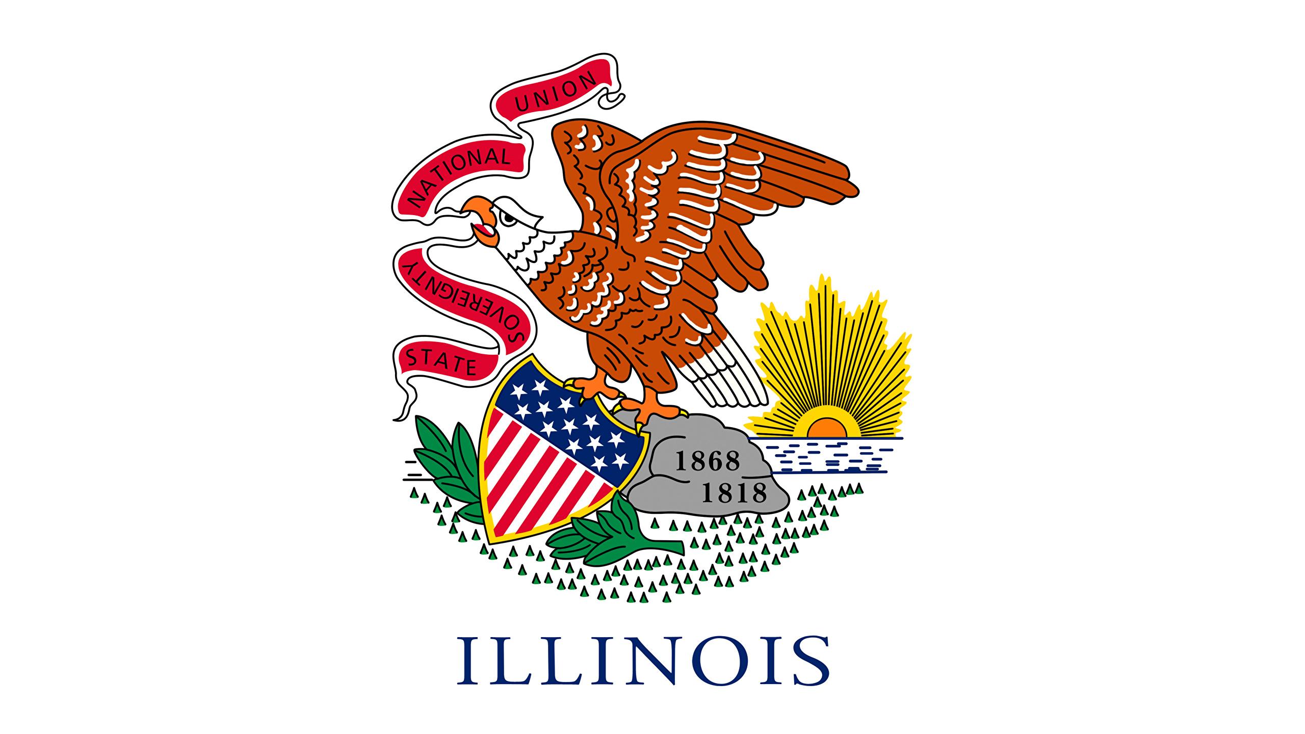 Photos Eagles USA Illinois Flag 2560x1440 2560x1440