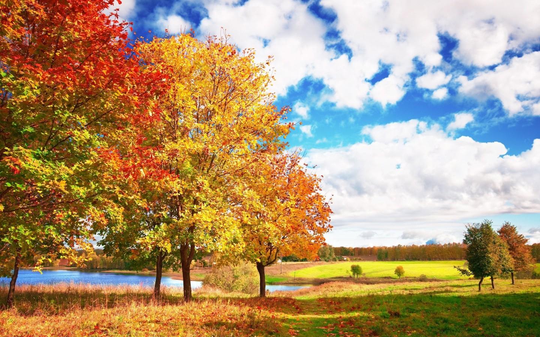 click select set as desktop background desktop wallpapers nature other 1440x900