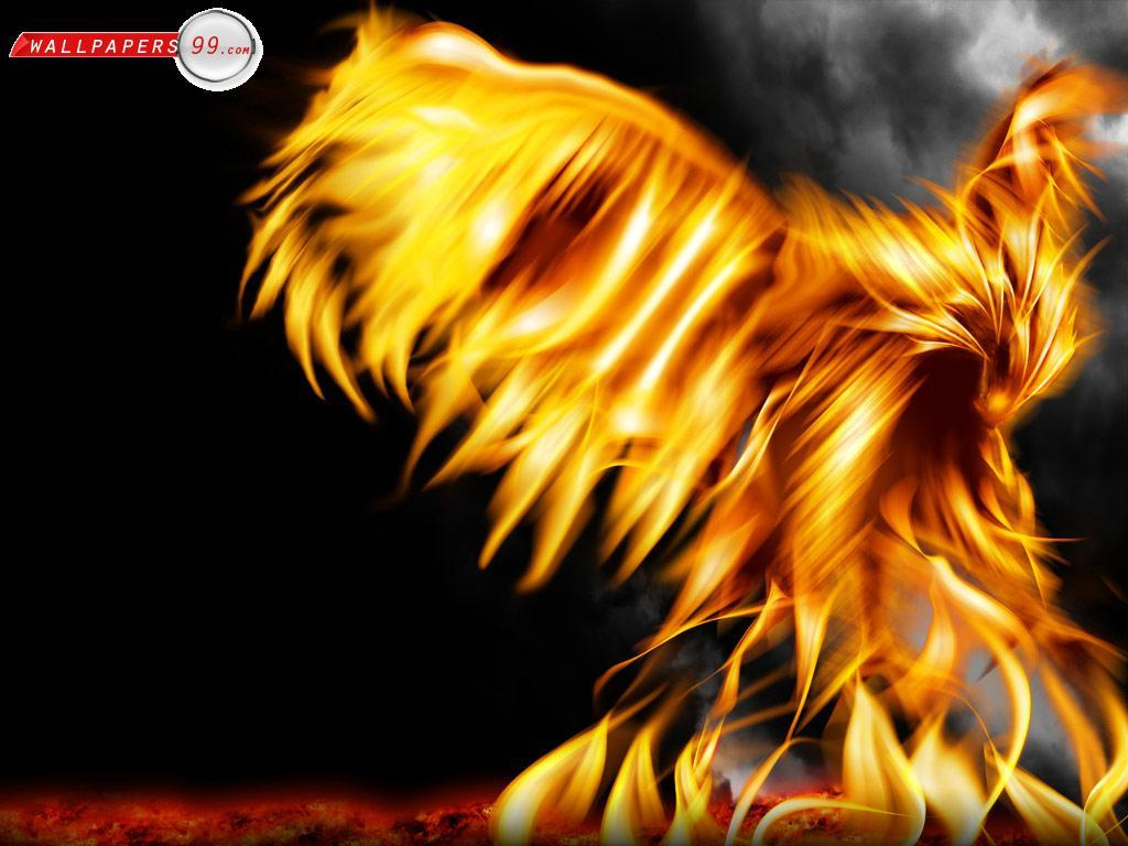 Awesome Fire Backgrounds 1024x768