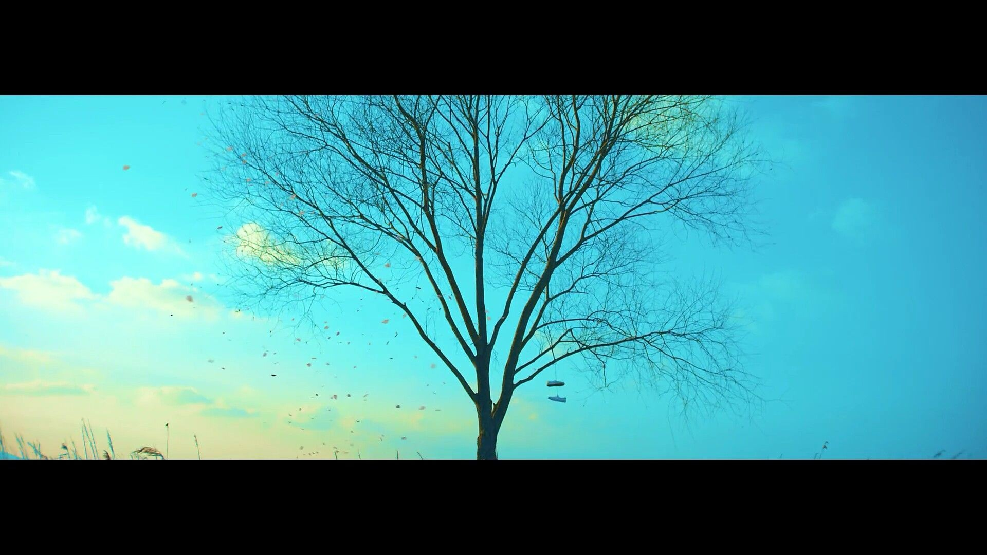 Spring Day Wallpaper posted by Zoey Sellers 1920x1080