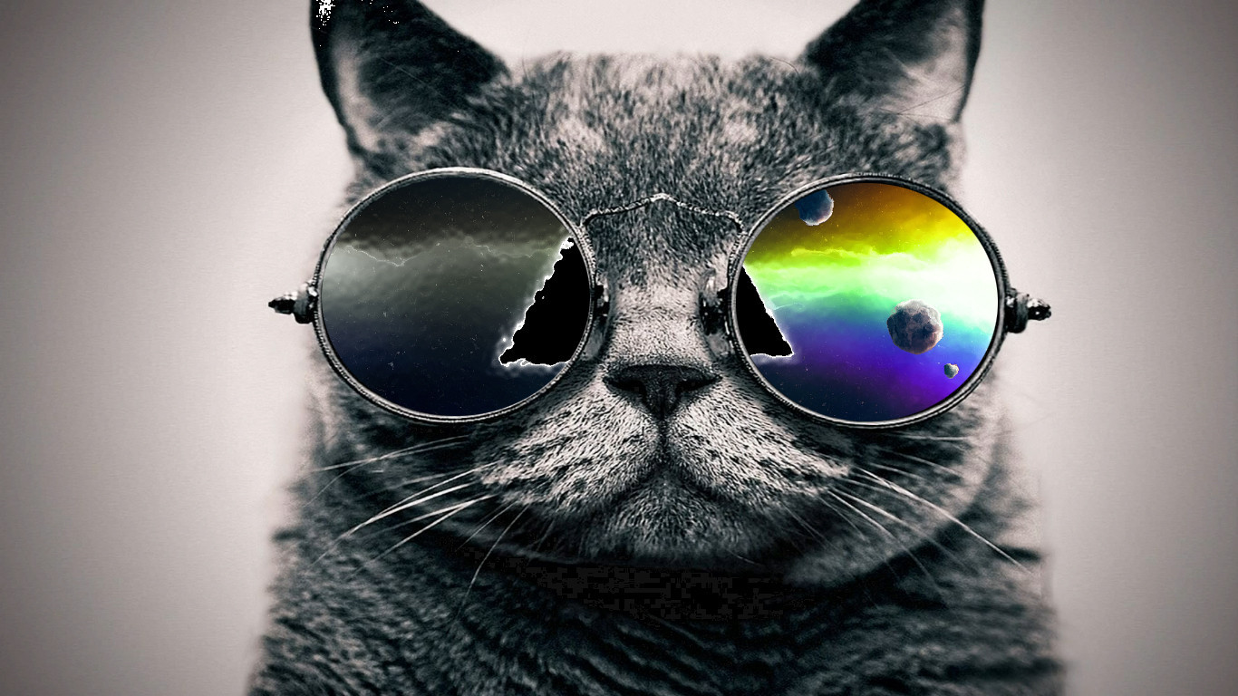 trippy cat wallpaper cool wallpapers share this cool wallpaper on 1366x768