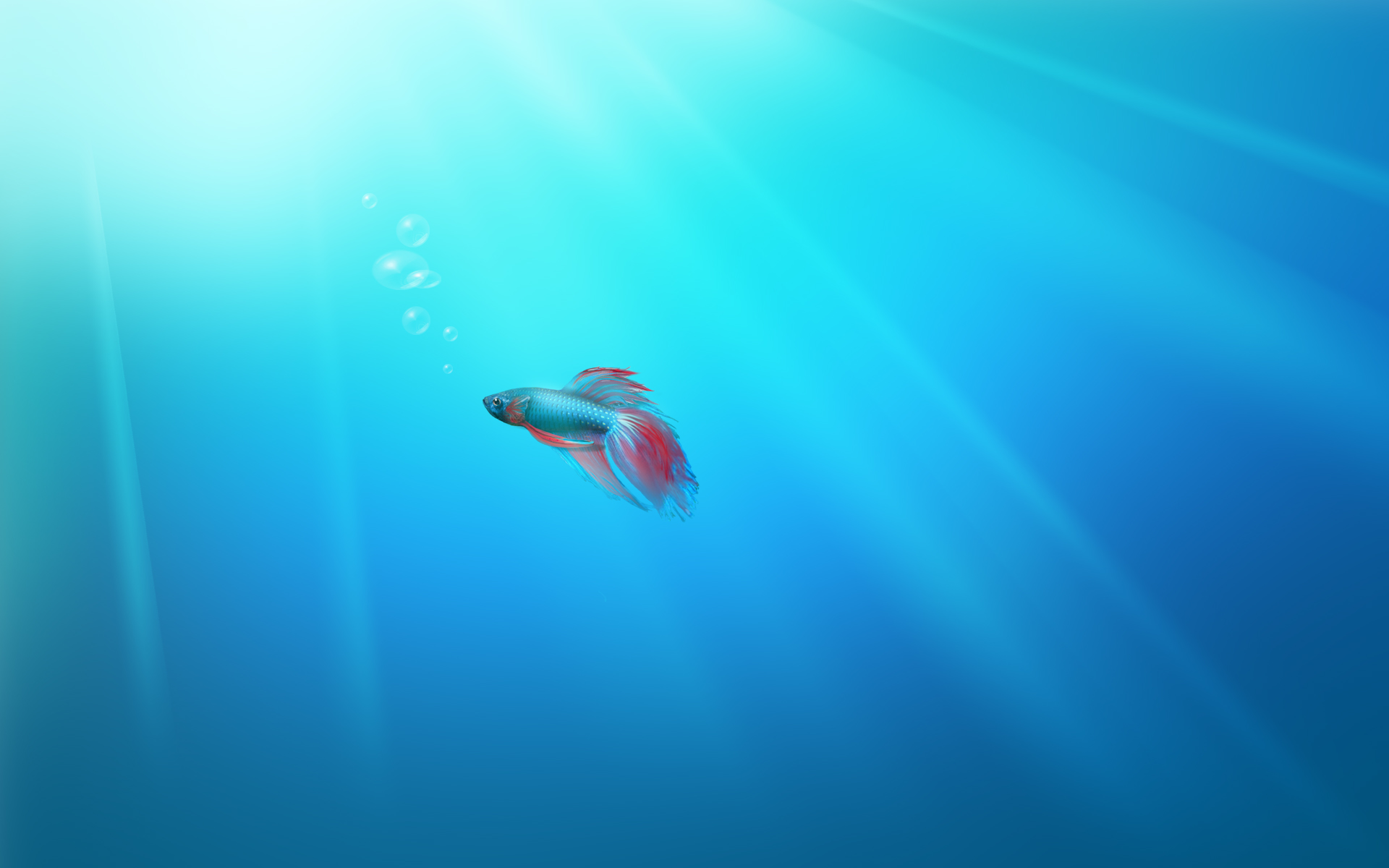 Windows 7 Beta Fish wallpaper   160940 1920x1200