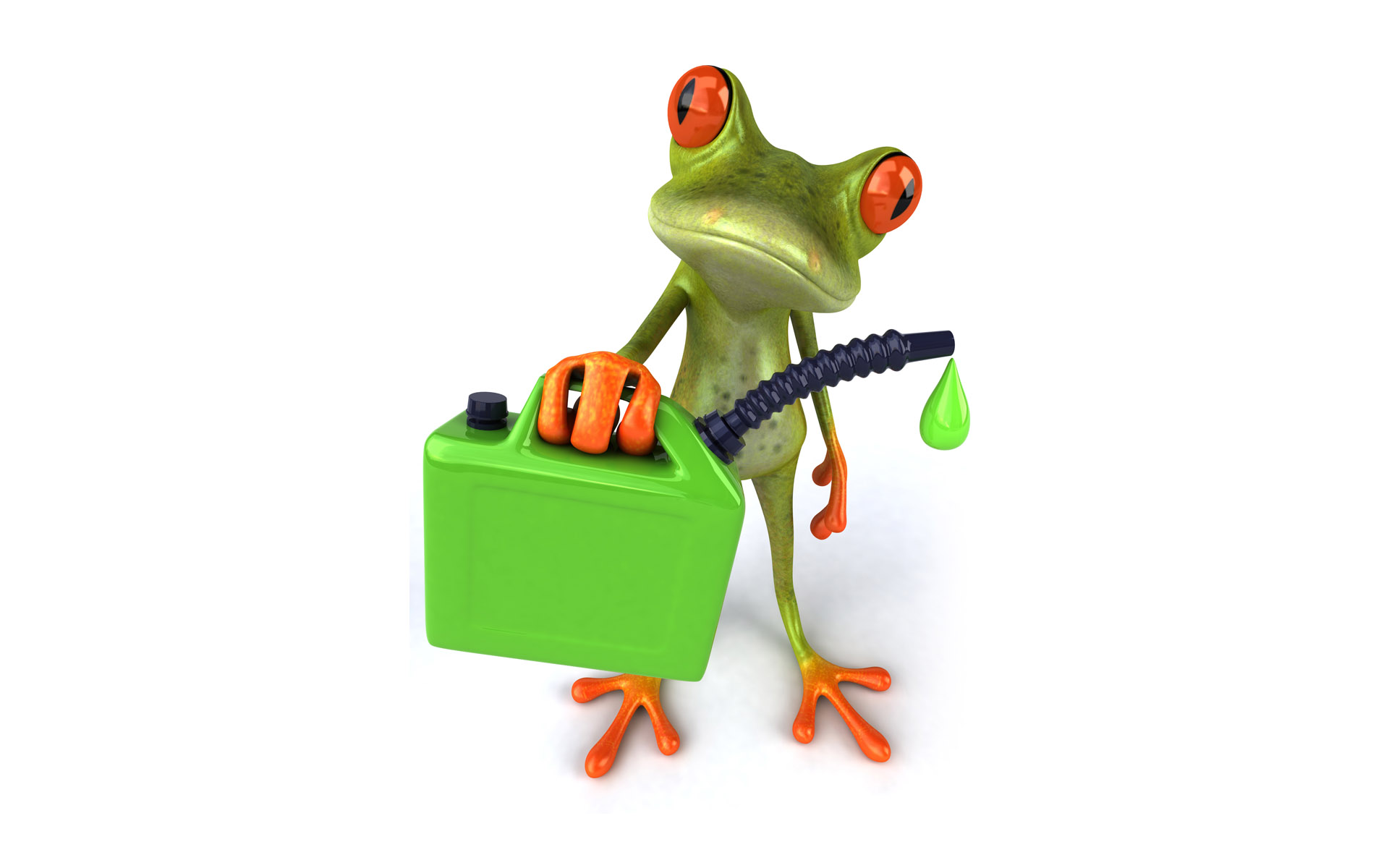 frog 3d wallpaper for desktop is a great wallpaper for your computer 1920x1200