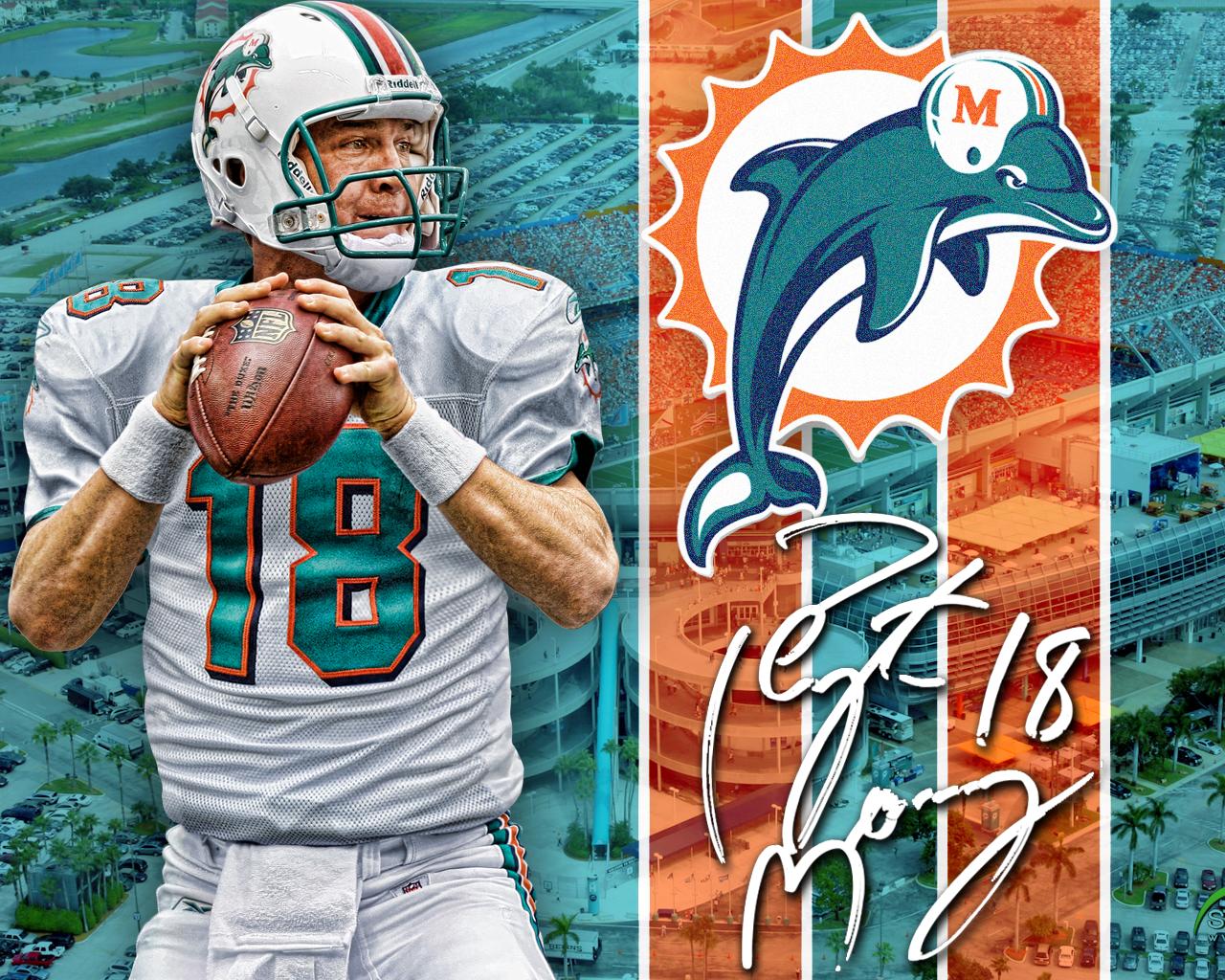 Miami Dolphins Wallpaper Tannehill 2013 1280x1024