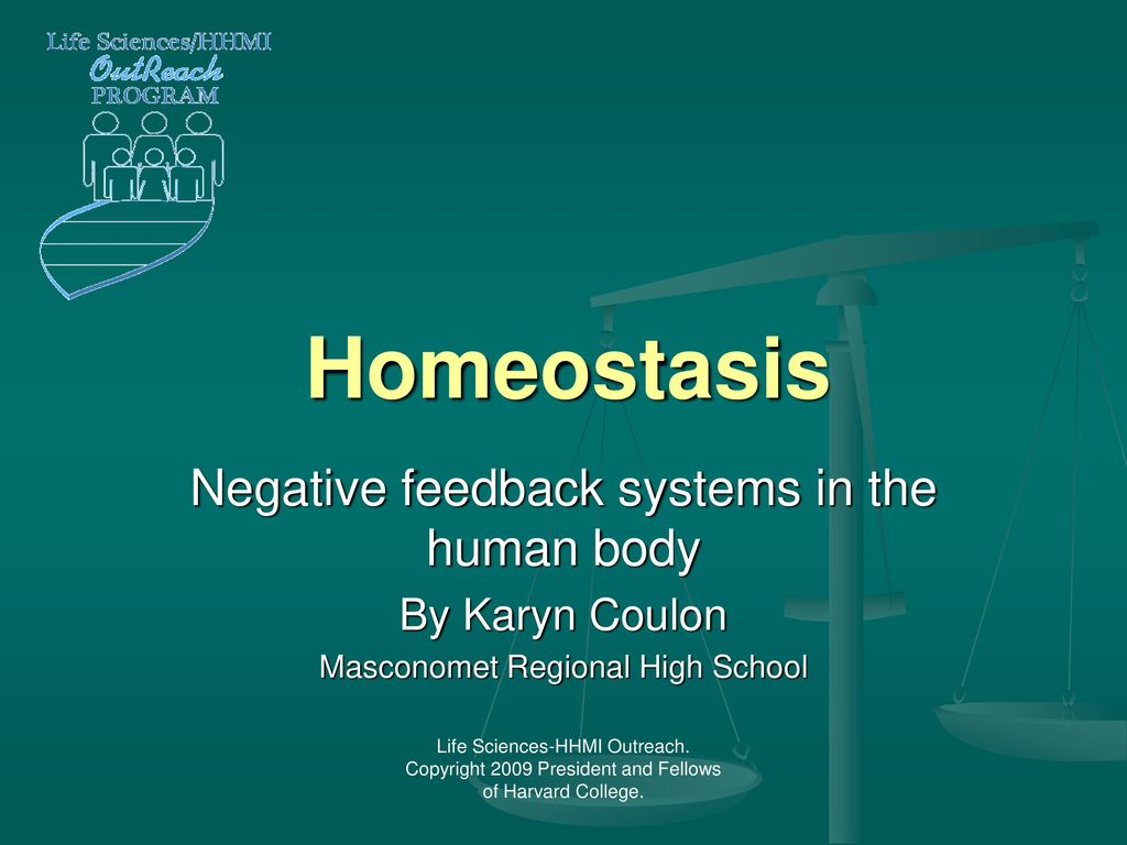 Homeostasis Negative feedback systems in the human body   ppt download 1024x768