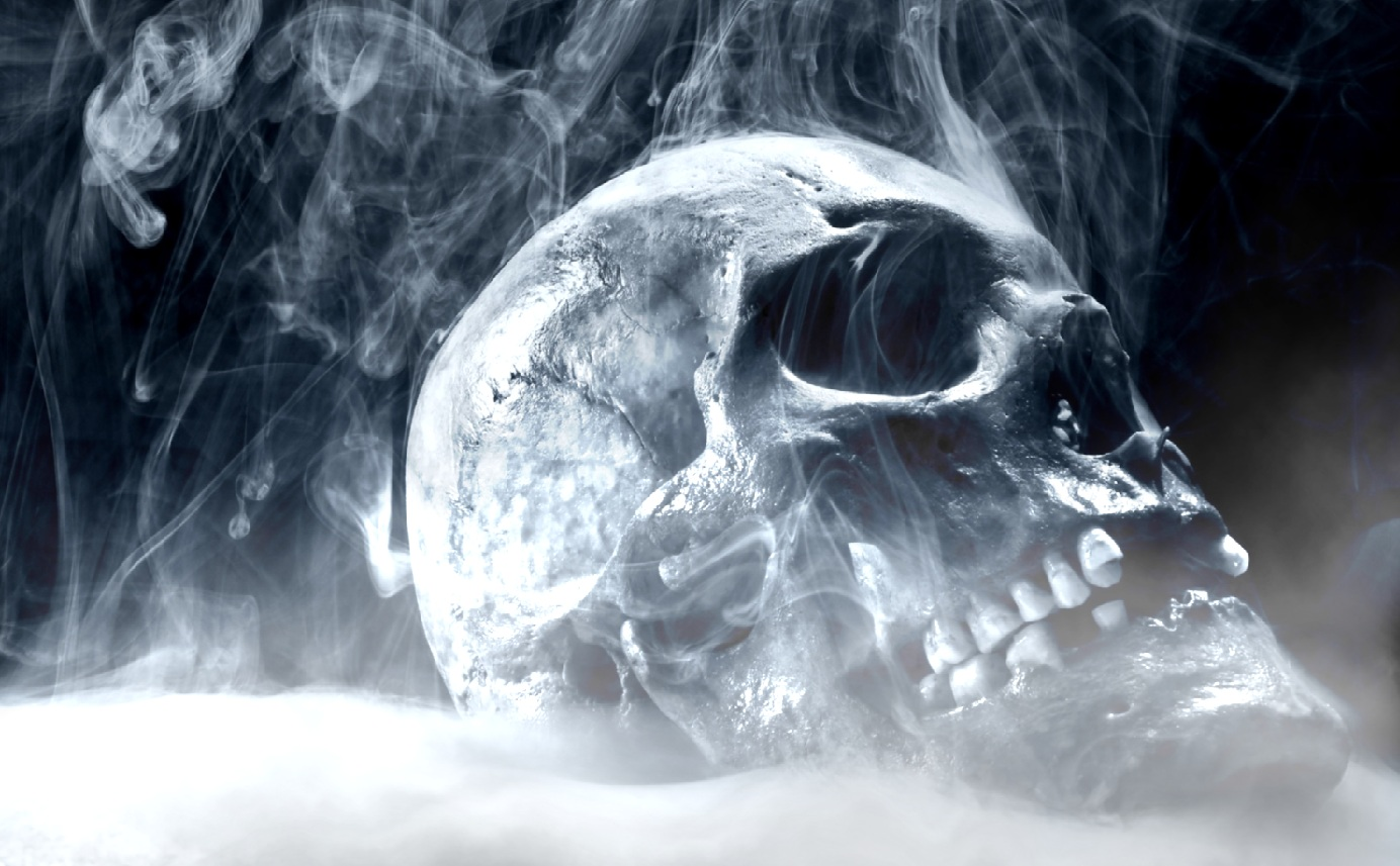 Download Fire Skull Animated Wallpaper 1384x857